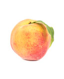 peach ripe Royaltyfria Bilder