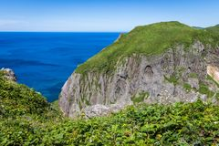Peach Rock, Rebun Island, Japan. Peach Rock, named for its shape, viewed from a cliff of wildflowers, is an attraction on the Momoiwa Observation Course hiking royalty free stock image