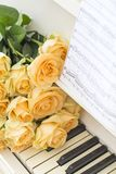 Peach roses on the piano royalty free stock photo