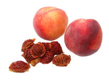 Peach Seeds Stock Photography