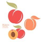 Peach. Set Stock Photos