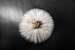 Pointe shoes and ballet tutu. Professional ballerina outfit. royalty free stock images