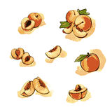 Peach and Slice set royalty free illustration