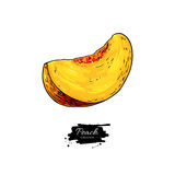 Peach slice vector drawing. Isolated hand drawn object on white Royalty Free Stock Photos