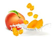 Peach slices falling to milk. Royalty Free Stock Images