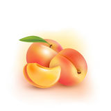 Peach. Sweet fruit. 3d vector icons set. Realistic illustration Stock Photography