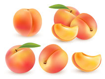 Peach. Sweet fruit. 3d vector set. Realistic illustration isolated Stock Images