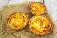 Peach tartlet individual pastry stock images