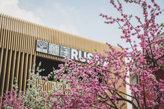 Peach tree flowers outside Russia pavilion at Expo 2015 in Milan Stock Photography