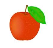 Peach - vector illustration. Stock Photography
