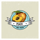 Peach Vintage, hand drawn fresh fruits background, summer plants, vegetarian and organic citrus and other, engraved. Royalty Free Stock Photography