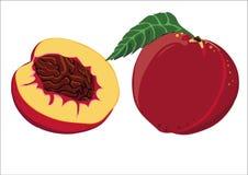 Peach walnut, yellow. Nectarine, fresh whole fruit, cut in half, shown on a white background Stock Photos