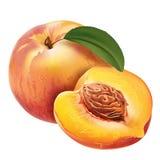 Peach on white background Stock Image