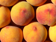 Peaches. Background royalty free stock images