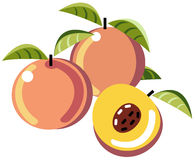Peaches. Illustration of simplistic peaches with half and leaves Stock Images