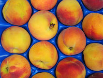 Peaches. Palette of fresh peaches Stock Image