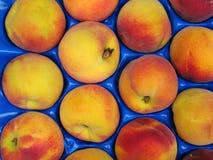 Peaches. Palette of fresh peaches stock image