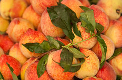Peaches. Fresh peaches with leaves for sale at a market Stock Images