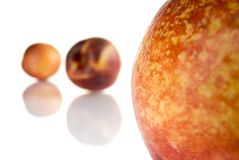 Peaches. Fresh colored peaches close up Royalty Free Stock Image