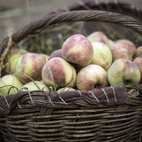 Peaches. In a basket for sale at a market Royalty Free Stock Photo
