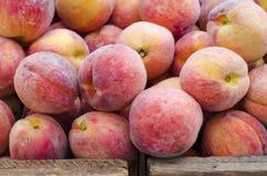 Free Peaches Stock Photo - 32570430