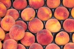 Free Peaches Stock Image - 5251111