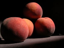 Peaches. Four peaches Royalty Free Stock Image