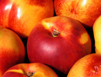 Peaches. Fresh jucy peaches royalty free stock images