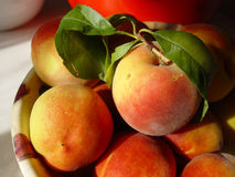 Peaches. Succulent friuts Royalty Free Stock Images