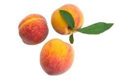 Peaches. Three ripe peaches isolated on white background Royalty Free Stock Photo
