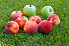 Peaches and apples Royalty Free Stock Image