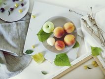 Peaches, apples, plums, leaves on plates on a light background royalty free stock photo
