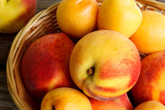 Peaches and apricots in basket Royalty Free Stock Photos