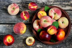 Peaches, apricots, nectarines Stock Image
