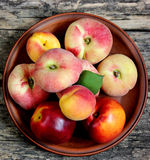 Peaches, apricots and nectarines Royalty Free Stock Images