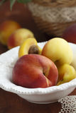 Peaches and apricots Royalty Free Stock Photography