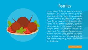 Peaches Banner Concept illustration libre de droits
