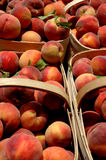 Peaches in a basket Royalty Free Stock Photo