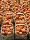 Peaches, Baskets Royalty Free Stock Photo