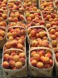 Peaches, Baskets royalty free stock photo
