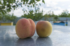 Peaches on the BLURE BACKGROUND. Royalty Free Stock Photography