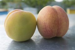 Peaches on the BLURE BACKGROUND. Royalty Free Stock Image