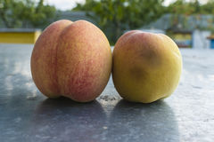 Peaches on the BLURE BACKGROUND. Stock Photography