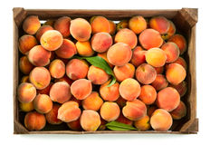 Peaches in box Royalty Free Stock Photography
