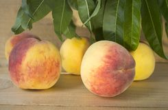 Peaches on a brown background. peaches with green leaves. view from above in green leaves. Royalty Free Stock Photos