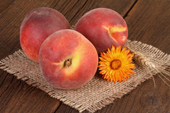 Peaches on burlap background Stock Photos