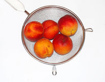 Peaches in colander isolated Royalty Free Stock Photography