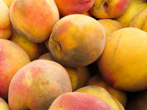 Peaches covered in ash royalty free stock photo