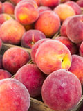 Peaches at a farmers market Stock Photo