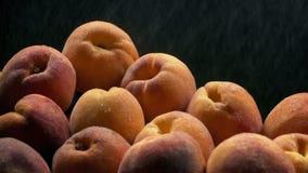 Peaches In Fine Water Spray arkivfilmer